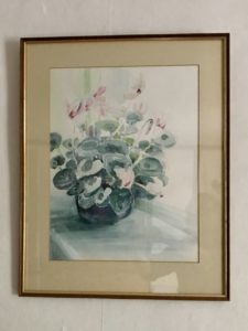 Pamela Morgan, Cyclamen, watercolour