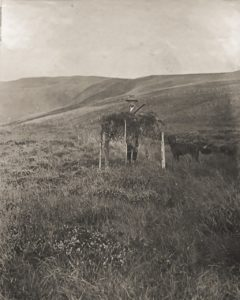 W.E. Downing. Shooting at the Beacon, c. 1910